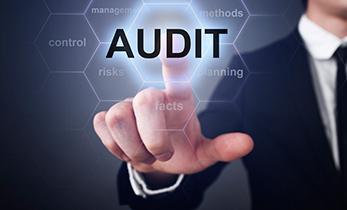 auditoria-praxis